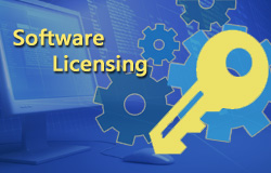 Software Licenses